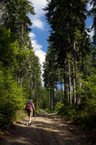 Tourist walking through mountain path Royalty Free Stock Photography