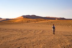 Tourist walking on the scenic dunes of Sossusvlei, Namib desert, Namib Naukluft National Park, Namibia. Adventure and exploration. In Africa Stock Photography