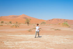 Tourist walking on the scenic dunes of Sossusvlei, Namib desert, Namib Naukluft National Park, Namibia. Adventure and exploration. In Africa Stock Images