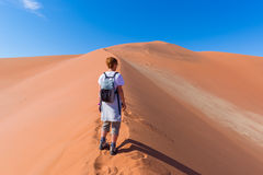 Tourist walking on the scenic dunes of Sossusvlei, Namib desert, Namib Naukluft National Park, Namibia. Adventure and exploration. In Africa Stock Image