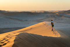 Tourist walking on the scenic dunes of Sossusvlei, Namib desert, Namib Naukluft National Park, Namibia. Afternoon light. Adventure. And exploration in Africa Stock Photography