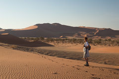 Tourist walking on the scenic dunes of Sossusvlei, Namib desert, Namib Naukluft National Park, Namibia. Afternoon light. Adventure. And exploration in Africa Stock Photos