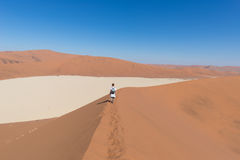 Tourist walking on the scenic dunes of Sossusvlei, Namib desert, Namib Naukluft National Park, Namibia. Afternoon light. Adventure. Tourist walking on the scenic Royalty Free Stock Image