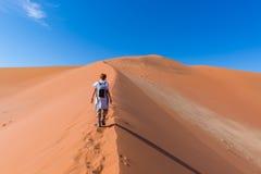 Tourist walking on the scenic dunes of Sossusvlei, Namib desert, Namib Naukluft National Park, Namibia. Afternoon light. Adventure. Tourist walking on the scenic royalty free stock images