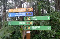 Tourist walking sign in forest Royalty Free Stock Photo