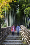 The tourist walking up stairs to visit Bamboo forest in Adashino nenbutsuji temple royalty free stock image