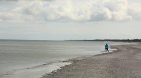Tourist walks on the beach. Denmark royalty free stock photo