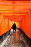 Tourist walks through the torii pathway to Fushimi Inari Taisha Shrine royalty free stock image