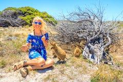 Free Tourist With Two Quokka Royalty Free Stock Photos - 108104538