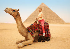 Tourist woman on camel in Giza. Young blonde near Pyramid Stock Image