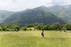 tourist woman with dog walking on a field in the mountain stock photo