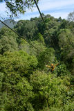Tourist woman going on a jungle zip line royalty free stock photo