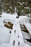 Tourist woman hiking with camera Stock Photo