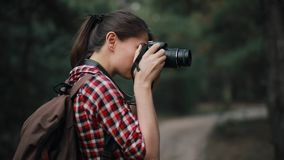 Tourist woman photographer hiking in forest, back view. Tourist woman photographer hiking in forest make a photo of wildlife, back view stock footage