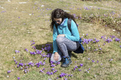 Tourist woman sitting on a meadow with purple blooming crocuses Stock Photo