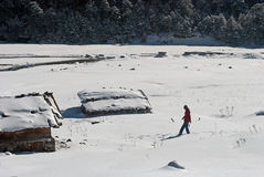 Tourist at Yumthang Valley. A tourist is roaming around the snow filled Yumthang Valley in Sikkim, India at the winter time and enjoying the beauty of nature Royalty Free Stock Photos