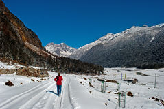 Tourist at Yumthang Valley. A tourist is roaming around the snow filled Yumthang Valley in Sikkim, India at the winter time and enjoying the beauty of nature Royalty Free Stock Photo