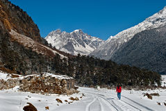 Tourist at Yumthang Valley. A tourist is roaming around the snow filled Yumthang Valley in Sikkim, India at the winter time and enjoying the beauty of nature Royalty Free Stock Photography