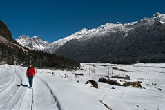 Tourist at Yumthang Valley. A tourist is roaming around the snow filled Yumthang Valley in Sikkim, India at the winter time and enjoying the beauty of nature Royalty Free Stock Images