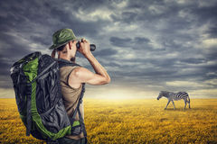 Tourist and zebra Stock Photo