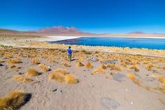 Touriste au ` de Laguna Honda de `, un lac de sel congelé avec des flamants sur le chemin au sel célèbre d'Uyuni plat, destinatio Image libre de droits