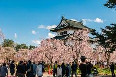 Touriste au parc de château de Hirosaki photo libre de droits