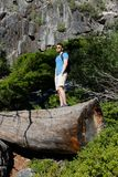 Touriste avec le sac à dos augmentant en montagnes Photographie stock