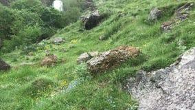 Touriste d'homme en montagnes de Caucase montant la roche banque de vidéos