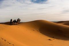 Touriste dans le désert Images stock