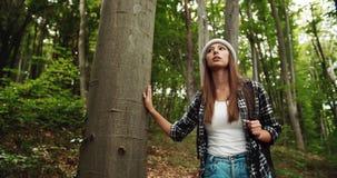 Touriste de femme avec le sac à dos marchant dans la forêt clips vidéos