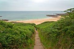 Touriste descendant des escaliers avec des fougères à la plage d'Erquy BR Images stock