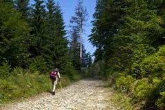 Touriste marchant par le chemin de montagne image stock