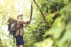 Touriste masculin supérieur effrayé exprimant la crainte en bois Photos stock