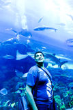 Touristen am Aquarium Dubai Stockbild