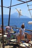 Touristen auf dem Schiff zogen von den Händen von Seemöwen ein lizenzfreie stockfotos