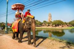 Touristen auf einem Elefantfahrausflug Stockbilder