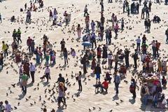 Touristen auf Quadratzufuhr San-Marco Lizenzfreies Stockfoto