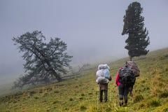 Touristen in den Altai-Bergen, Russland Lizenzfreies Stockbild