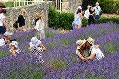 Touristen in der Abtei von Senanque, Provence, Frankreich Stockfotografie