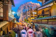 Touristen an der alten Stadt der Higashiyama Bezirk Kyotos, w?hrend Kirschbl?te-Jahreszeit stockfotografie