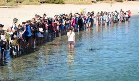 Touristen an der Delphinerfahrung Affe Mia Haifisch-Bucht Sein gelegen auf Wellington-Straße und war im November 2012 geöffnet Stockfotografie