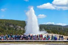 Touristen, die das alte zuverlässige Ausbrechen in Yellowstone Natio aufpassen Lizenzfreies Stockbild