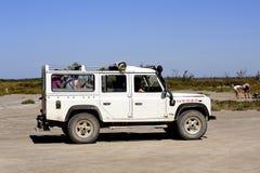 Touristen, die das Camargue 4x4 besuchen Stockfotografie