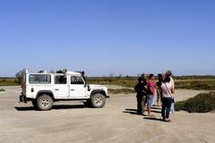 Touristen, die das Camargue 4x4 besuchen Lizenzfreie Stockfotografie