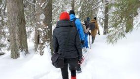 Touristen, die in den Winterbergen wandern stock video footage