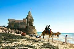 Touristen, die eine Kamelfahrt nehmen Lizenzfreies Stockfoto