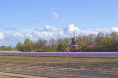 Touristen, die eine Windmühle in den Niederlanden besuchen Stockfoto