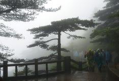 Touristen, die gelbe Berge am nebeligen Tag wandern Lizenzfreies Stockbild