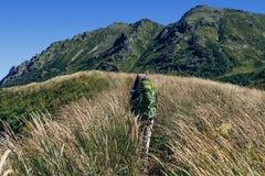 Touristen, die zu den Bergen gehen Stockfotos