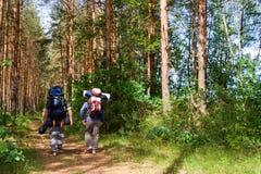 Touristen am Holz lizenzfreies stockbild